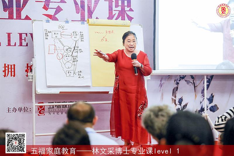 五福教育直播课程
